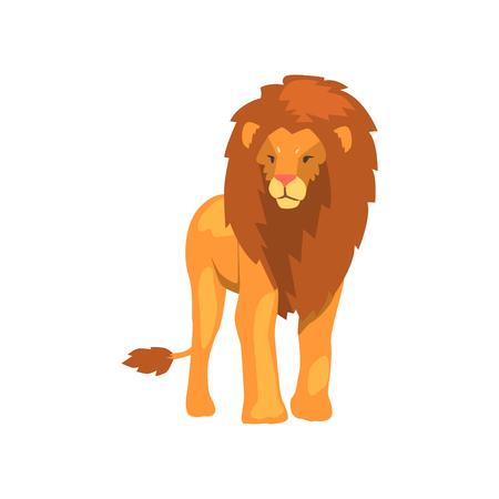 Powerful lion, wild predatory animal vector Illustration on a white background Illustration