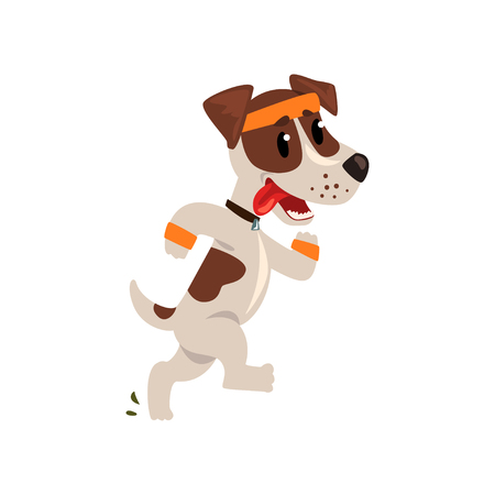 Cute jack russell terrier athlete running putting his tongue, funny sportive pet dog character doing sports vector illustration on a white background.