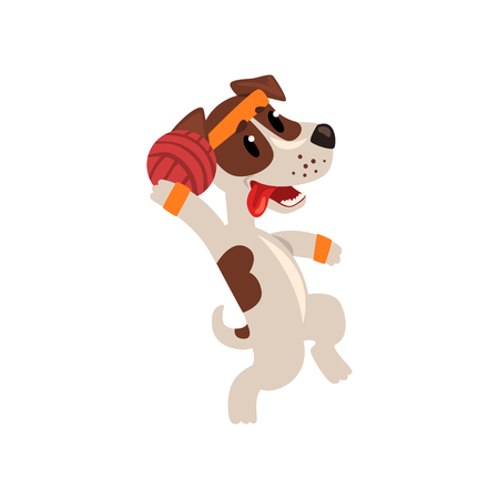 Cute jack russell terrier athlete, playing with ball, funny sportive pet dog character doing sports vector illustration on a white background.