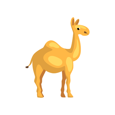 Egyptian camel. Cartoon character of desert animal. Creature with hump on its back. Graphic element for promo poster of travel agency. Flat vector design