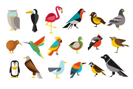 Verschillende vogels instellen kleurrijke vectorillustraties op een witte achtergrond. Stock Illustratie