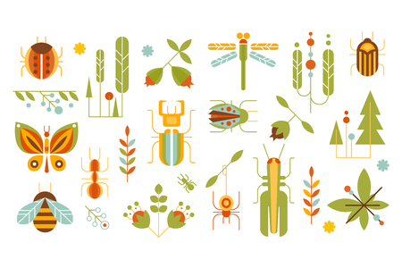Wild plants and insects set, forest elements concept vector illustrations