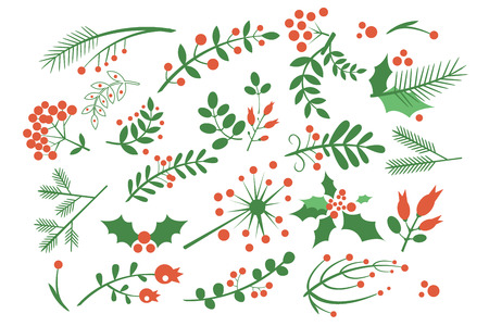 Collection of red rowan berries, branches of fir, green leaves and other blossoming plants. Natural decorative elements for postcards. Colored flat vector illustration isolated on white background.