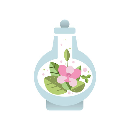 Fresh pink flower with green leaves inside glass vessel with lid. Botanical theme. Decorative flat vector element for poster of florist store