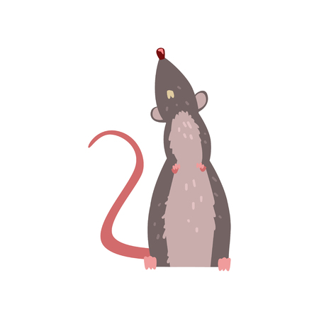Cute grey mouse looking up, funny rodent character vector Illustration isolated on a white background.