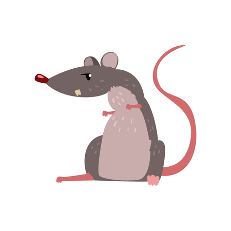 Angry grey mouse, cute rodent character vector Illustration isolated on a white background.