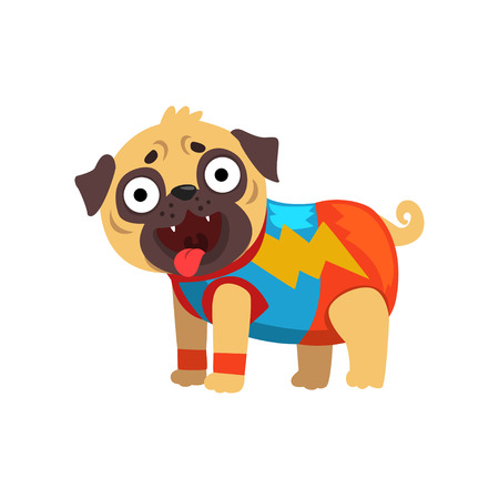 Funny pug dog character in a superhero costume vector Illustration on a white background