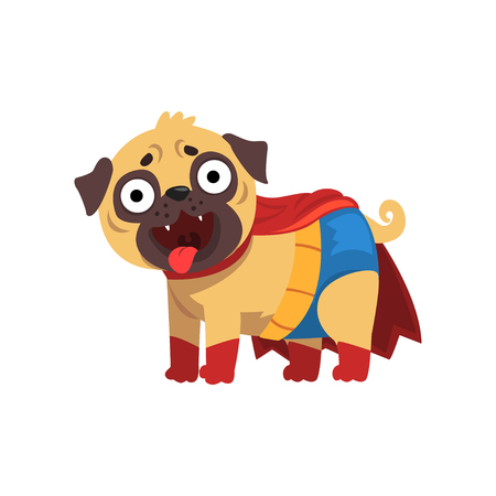 Funny pug dog character in a superhero costume, funny dog in red cape red vector Illustration on a white background