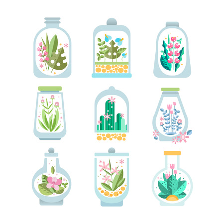 Flat vector set of glass vessel with blooming plant inside. Floral compositions in transparent bottles. Flowers and cactuses. Botanical theme Illustration