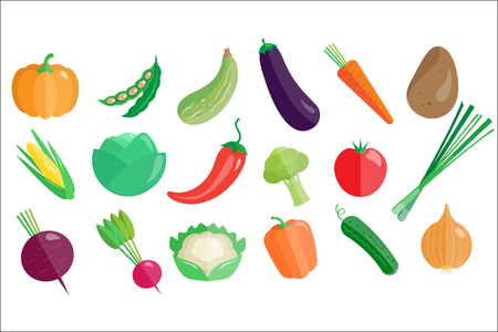 Fresh vegetables big set, healthy vegetarian organic food vector Illustrations isolated on a white background.