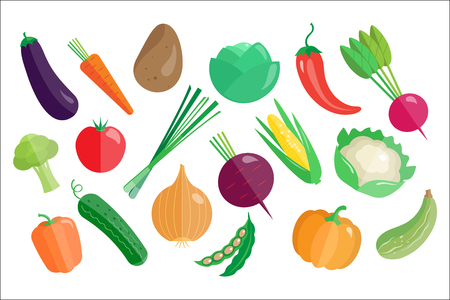 Vegetables big set, healthy vegetarian food vector Illustrations isolated on a white background.