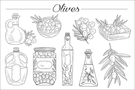 Set of monochrome olives, branches, various oil bottles and bowls. Natural product. Sketch style icons. Hand drawn vector elements for decoration