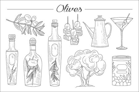 Hand drawn set of olive tree, branch, oil bottles with herbs, martini glass, tasty snacks. Fresh and natural product. Sketch style icons. Monochrome vector design