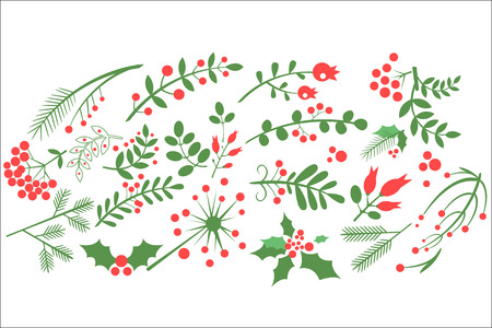 Flat vector  of natural decorative elements. Red rowan berries, branches of fir, green leaves and other blossoming plants. Design for greeting card