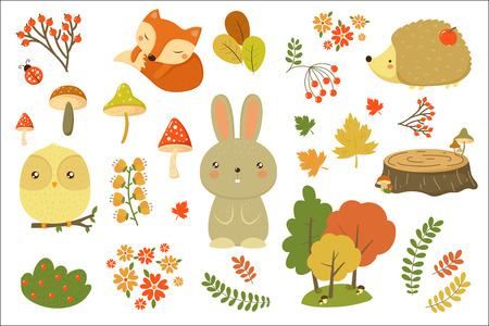 Autumn forest elements set, forest animals, leaves, flowers, mushrooms cartoon vector Illustrations isolated on a white background. Stock Illustratie