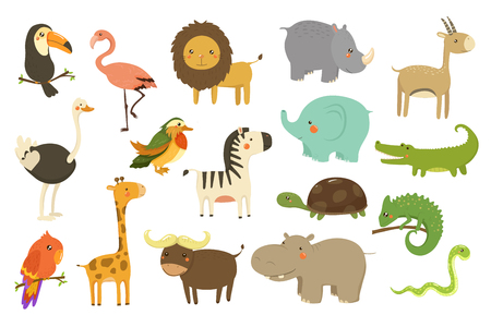 Jungle animals and birds set, flamingo, gazelle, elephant, rhinoceros, ostrich, toucan, lion, turtle crocodile giraffe vector Illustrations isolated on a white background