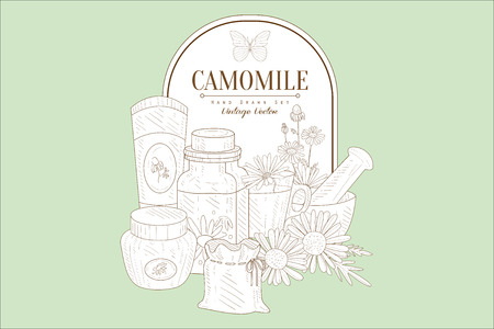Hand drawn illustration of natural camomile cosmetics for skin care.  イラスト・ベクター素材