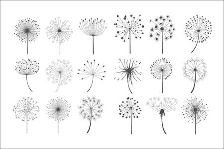 Flores de diente de león con semillas esponjosas, elementos de diseño de siluetas florales ilustración vectorial sobre un fondo blanco.