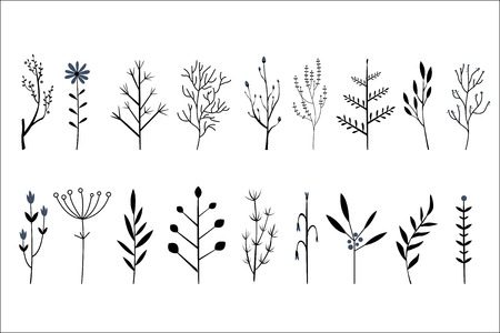 Vector set of hand drawn decorative herbs and flowers. Small twigs of different plants. Botanical icons Foto de archivo - 100470281