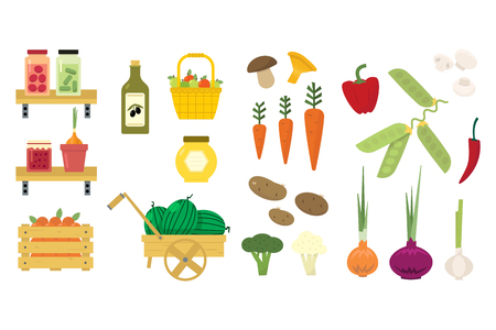 Flat vector set of organic food icons. Fresh vegetables and fruits. Pickled cucumbers and tomatoes. Basket with apples. Jam, honey and olive oil.