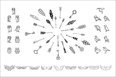 Vectoe set of various decor elements owls, birds, wings and cute hipster arrows. Icons in line style. Design for business card, logo or postcard