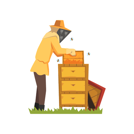 Beekeeper in a protective suit vector Illustration on a white background Illusztráció