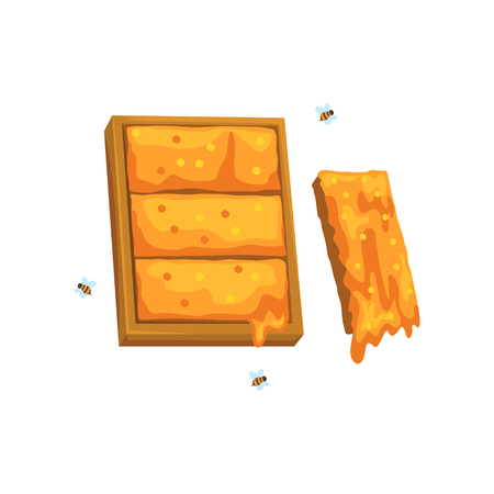 Honeycomb, apiary and beekeeping vector Illustration 向量圖像