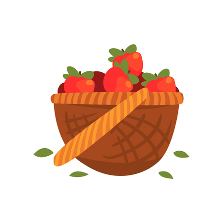 Red ripe apples in the basket vector Illustration
