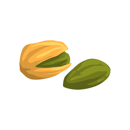 Pistachio nut, nutritious natural product vector Illustration on a white background.