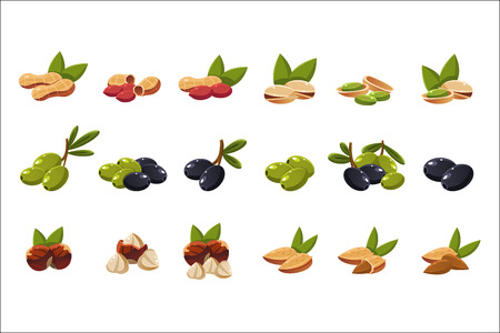 Nuts and olives set, nutritious natural products vector Illustration on a white background