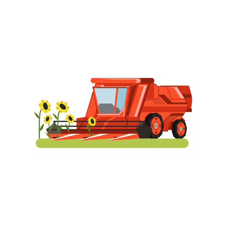 Combine harvester working in field gathering sunflowers, agricultural machinery vector Illustration isolated on a white background. Illustration