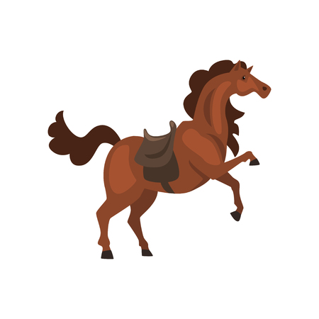 Horse with saddle vector Illustration on a white background