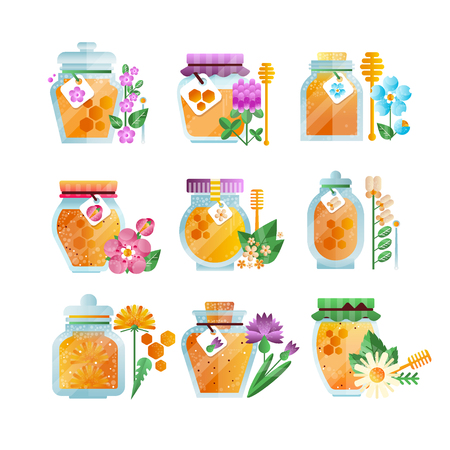 Glass jars of herbal honey set, natural golden organic honey and wild flowers vector Illustrations on a white background