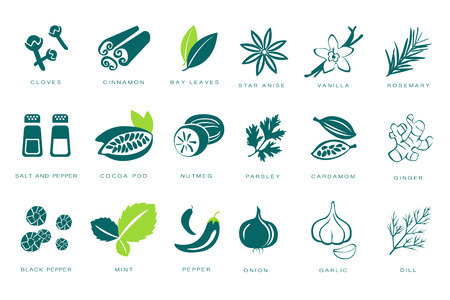 Fragrant spices linear icons set, seasonings with names vector Illustrations on a white background 矢量图像