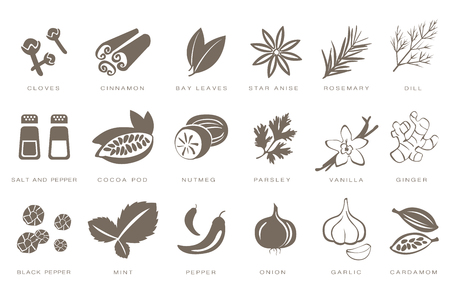 Fragrant spices linear icons set, spices and seasonings with names black vector Illustrations on a white background