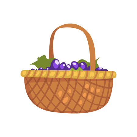 Bunches of grape in the wicker basket, winery production process vector Illustration on a white background Foto de archivo - 102529028