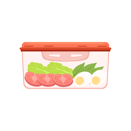 Lunch box with egg and vegetables, healthy food for kids and students vector Illustration on a white background