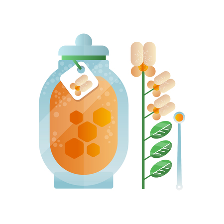 Glass jar of honey and melilot flower, natural herbal organic product vector Illustration on a white background Illustration