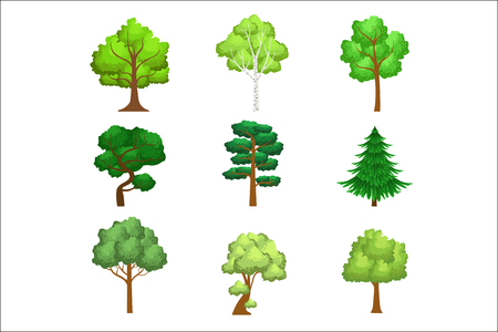 Realistic Trees Set