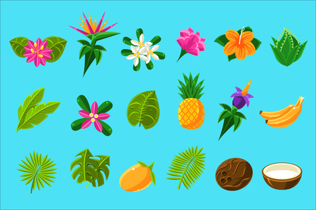 Tropical Plants And Fruits Set 写真素材 - 102767201
