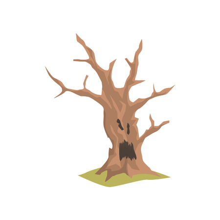 Old dry tree with scary face. Natural element for forest or park landscape. Colored flat vector design  イラスト・ベクター素材
