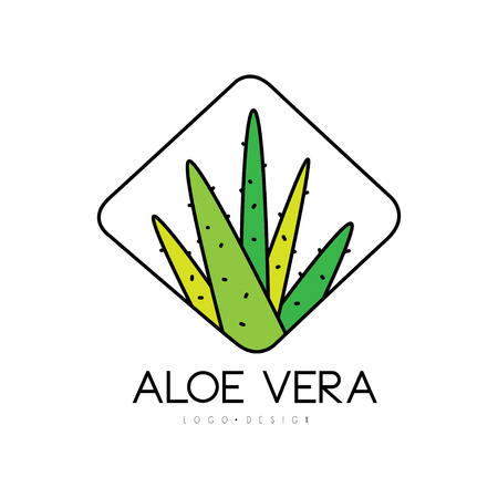 Aloe Vera design, natural product badge, beauty and cosmetics green label vector Illustration on a white background