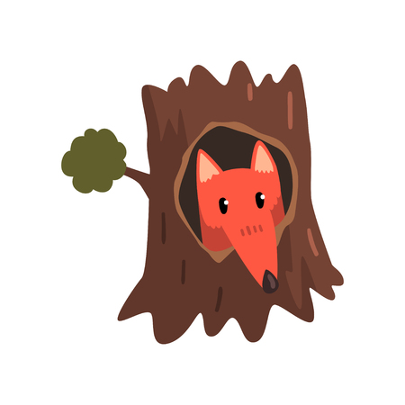 Cute fox sitting in hollow of tree, hollowed out old tree and cute animal cartoon character inside vector Illustration on a white background