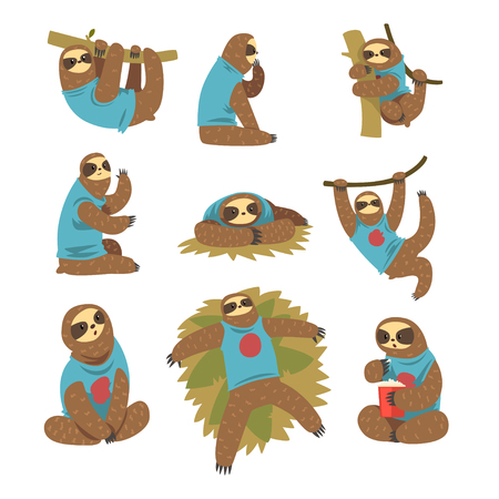 Funny sloths set, lazy exotic rainforest animal character in different postures vector Illustrations on a white background Иллюстрация
