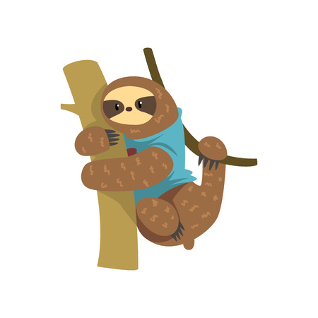Funny sloth in blue t shirt hanging on the tree, lazy exotic rainforest animal character vector Illustrations on a white background