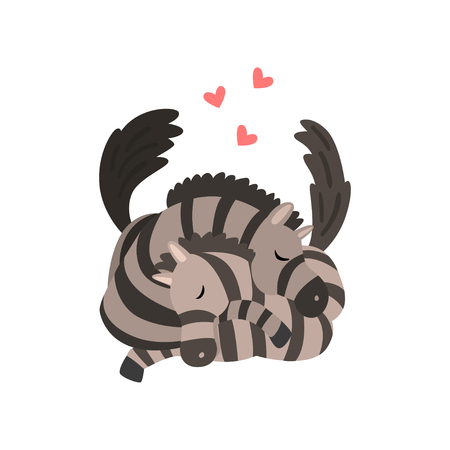 Couple of zebras in love embracing each other, two happy  aniimals hugging with hearts over their head vector Illustration on a white background Çizim