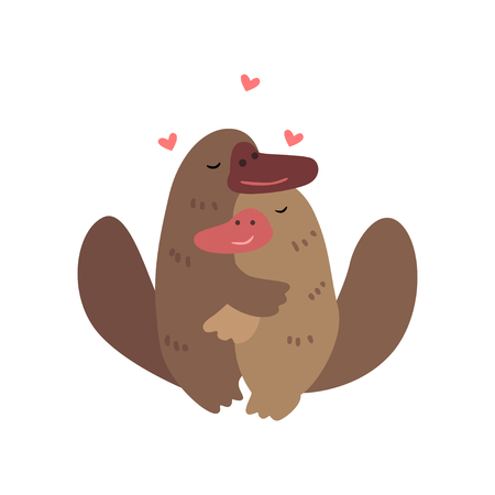 Couple of platypuses in love embracing each other, two happy  aniimals hugging with hearts over their head vector Illustration on a white background Illustration