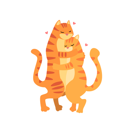 Couple of cute tigers in love embracing each other, two happy  aniimals hugging with hearts over their head vector Illustration on a white background