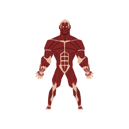 Human biological skeletal system, anatomy of human body vector Illustration isolated on a white background.