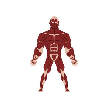 Système squelettique biologique humain, anatomie du vecteur du corps humain Illustration isolé sur fond blanc. Vecteurs